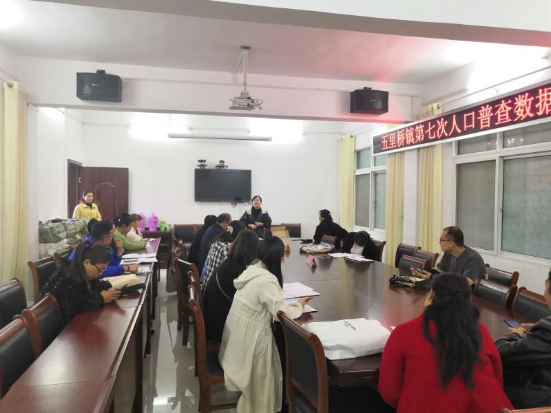 西峡县五里桥镇:精准普查人口数据助推脱贫攻坚