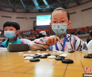青海千名围棋少年同场竞技 开展七轮上万盘对弈